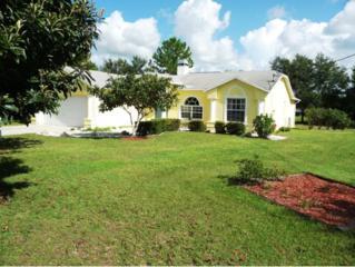 10163 W Pamondeho Circle  , Crystal River, FL 34428 (MLS #712460) :: Plantation Realty Inc.