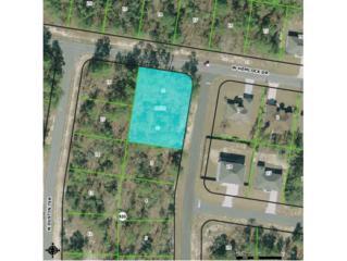 7272 N Hemingway  , Citrus Springs, FL 34433 (MLS #712513) :: Plantation Realty Inc.
