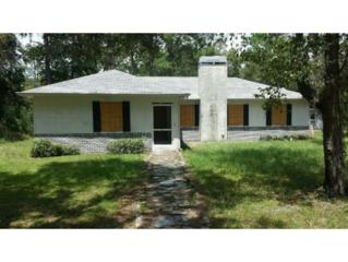 8385 W Oak St  , Crystal River, FL 34428 (MLS #712584) :: Plantation Realty Inc.