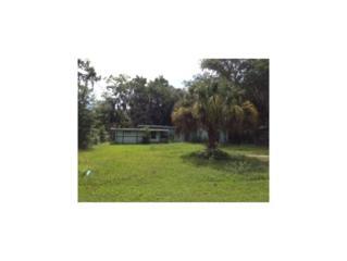 1316 NE 5th Ave  , Crystal River, FL 34428 (MLS #712674) :: Plantation Realty Inc.