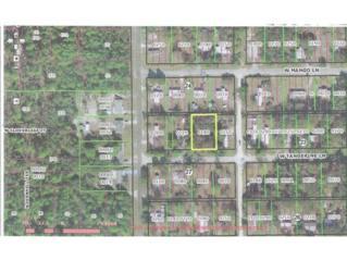 6451 W Tangerine Ln  , Crystal River, FL 34429 (MLS #712694) :: Plantation Realty Inc.