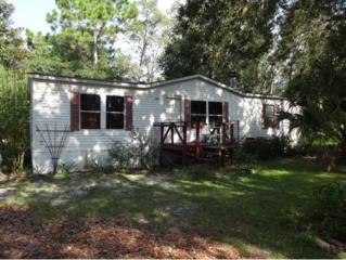 4479 N Mandrake Pt  , Crystal River, FL 34428 (MLS #712723) :: Plantation Realty Inc.