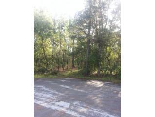 12003 S Elm Pt  , Floral City, FL 34436 (MLS #712769) :: Plantation Realty Inc.