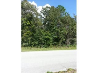 1575 N Lombardo Ave  , Lecanto, FL 34461 (MLS #712770) :: Plantation Realty Inc.