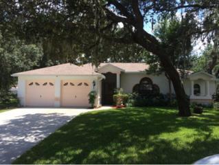 5090 W Kristina Loop  , Lecanto, FL 34461 (MLS #712772) :: Plantation Realty Inc.