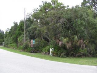 8646 W Admiral Byrd  , Crystal River, FL 34429 (MLS #713086) :: Plantation Realty Inc.