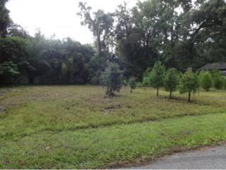 462 NE 2nd St  , Crystal River, FL 34429 (MLS #713092) :: Plantation Realty Inc.