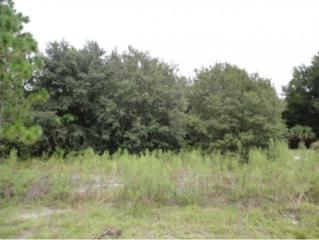 8155 W Baumgardner Lane  , Crystal River, FL 34429 (MLS #713098) :: Plantation Realty Inc.