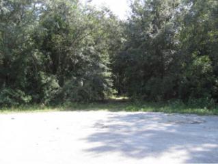 12000 W Jassid Ct  , Crystal River, FL 34428 (MLS #713123) :: Plantation Realty Inc.