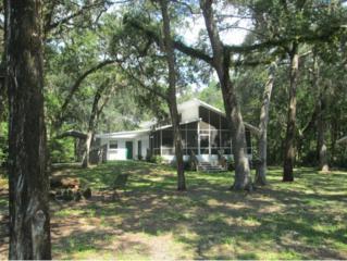 6691 S Dot Loop  , Homosassa, FL 34448 (MLS #713188) :: Plantation Realty Inc.