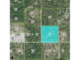 6823 W Copenhagen St  , Dunnellon, FL 34433 (MLS #713234) :: Plantation Realty Inc.