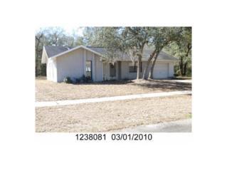 2494 W Eric Dr  , Citrus Springs, FL 34434 (MLS #713436) :: Plantation Realty Inc.