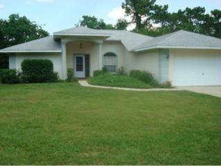 15  Rebecca Ct  , Homosassa, FL 34446 (MLS #713753) :: Plantation Realty Inc.