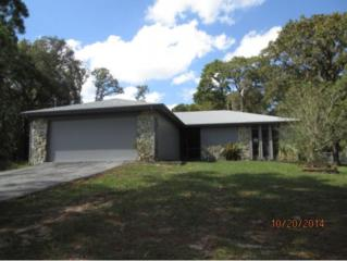 1360 N Dunkenfield Ave  , Crystal River, FL 34429 (MLS #713828) :: Plantation Realty Inc.