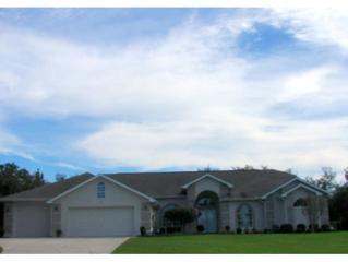 6  Rudbeckia Ct  , Homosassa, FL 34446 (MLS #713853) :: Plantation Realty Inc.