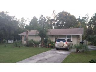 10090  Pamondeho Circle  , Crystal River, FL 34428 (MLS #713857) :: Plantation Realty Inc.