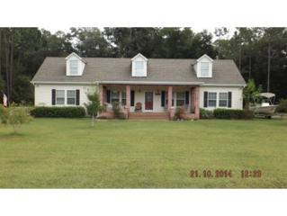 8387 N Marinazzo Ter  , Crystal River, FL 34428 (MLS #713858) :: Plantation Realty Inc.