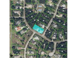 958 N Chance Way  , Inverness, FL 34453 (MLS #713859) :: Plantation Realty Inc.