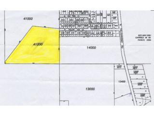 11497  Yellow Oak Ln  , Crystal River, FL 34428 (MLS #713870) :: Plantation Realty Inc.