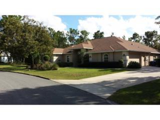 11 E Drypetes Ct  , Homosassa, FL 34446 (MLS #714032) :: Plantation Realty Inc.