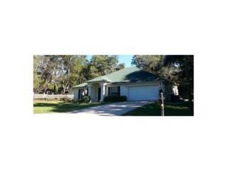9281 N Cougar Paw Dr  , Citrus Springs, FL 34433 (MLS #714034) :: Plantation Realty Inc.