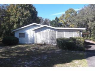 5158 S Louise Pt  , Homosassa, FL 34446 (MLS #714330) :: Plantation Realty Inc.