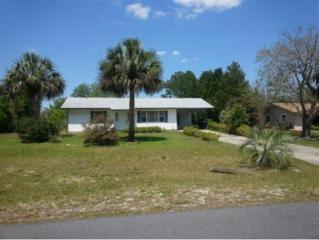 10101 W Pamondeho Circle  , Crystal River, FL 34428 (MLS #714387) :: Plantation Realty Inc.