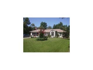8750 N Tempest Drive  , Citrus Springs, FL 34433 (MLS #714512) :: Plantation Realty Inc.