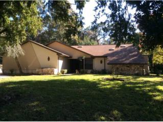 2770 W W. Antioch Ln  , Lecanto, FL 34461 (MLS #714514) :: Plantation Realty Inc.