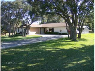7824 W Flight Path Ct  , Crystal River, FL 34429 (MLS #714528) :: Plantation Realty Inc.