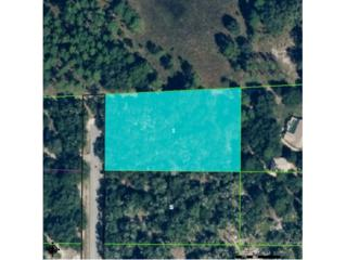 8749 N Blackthorn Ave  , Crystal River, FL 34428 (MLS #714567) :: Plantation Realty Inc.