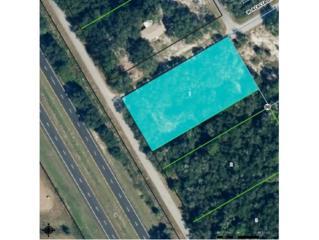 9247 N Buttercup Way  , Crystal River, FL 34428 (MLS #714568) :: Plantation Realty Inc.