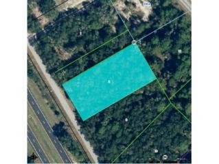 9243 N Buttercup Way  , Crystal River, FL 34428 (MLS #714571) :: Plantation Realty Inc.