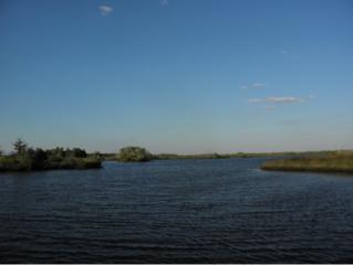 3000  Salt River  , Crystal River, FL 34429 (MLS #714572) :: Plantation Realty Inc.