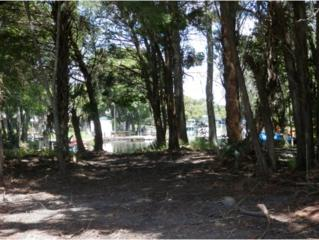 0 SE Paradise Point Rd.  , Crystal River, FL 34429 (MLS #714820) :: Plantation Realty Inc.