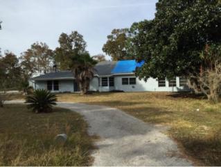 2166 S Whitehurst Ave  , Homosassa, FL 34448 (MLS #714870) :: Plantation Realty Inc.