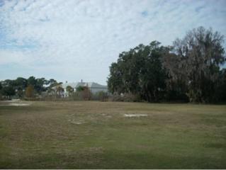 9301 W Ft. Island Trail  , Crystal River, FL 34429 (MLS #715003) :: Plantation Realty Inc.