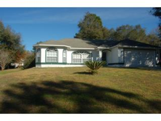 8865 N Mendoza Way  , Citrus Springs, FL 34434 (MLS #715036) :: Plantation Realty Inc.