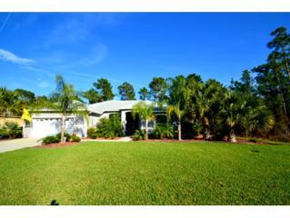 3  Hazelwood Court N , Homosassa, FL 34446 (MLS #715037) :: Plantation Realty Inc.