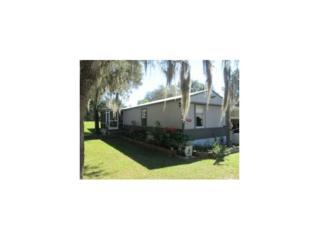 4469 S Halo Hills Ter  , Lecanto, FL 34461 (MLS #715296) :: Plantation Realty Inc.
