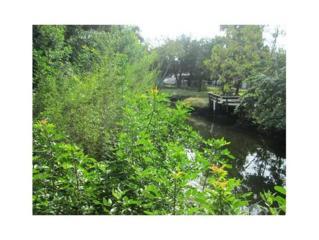 14368 W Seashell Ct  , Crystal River, FL 34429 (MLS #715349) :: Plantation Realty Inc.
