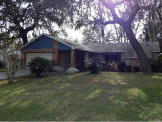 5072 W Kristina Loop  , Lecanto, FL 34461 (MLS #715383) :: Plantation Realty Inc.