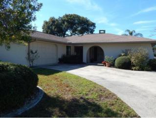 1010 SE Paradise Ave  , Crystal River, FL 34429 (MLS #715499) :: Plantation Realty Inc.