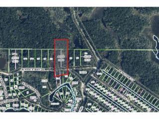 14501 W Hide A Way Dr  , Crystal River, FL 34429 (MLS #715834) :: Plantation Realty Inc.