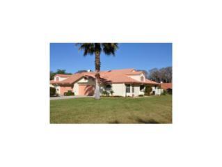 214  Buena Vista Ct  , Inverness, FL 34450 (MLS #715847) :: Plantation Realty Inc.