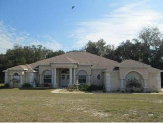 6013 N Mckree Ter  , Crystal River, FL 34428 (MLS #716415) :: Plantation Realty Inc.