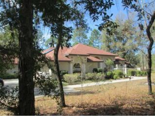 3977 N Buckhorn Dr  , Beverly Hills, FL 34465 (MLS #716621) :: Plantation Realty Inc.