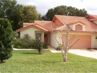 504  Palma Ceia  , Inverness, FL 34450 (MLS #717001) :: Plantation Realty Inc.