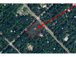 12588 W Checkerberry Dr  , Crystal River, FL 34428 (MLS #717446) :: Plantation Realty Inc.