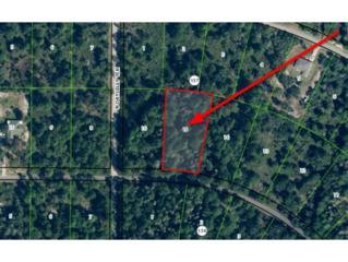 11543 W Cockscomb Dr  , Crystal River, FL 34428 (MLS #717449) :: Plantation Realty Inc.